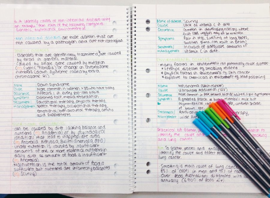 1:1 Study Habits