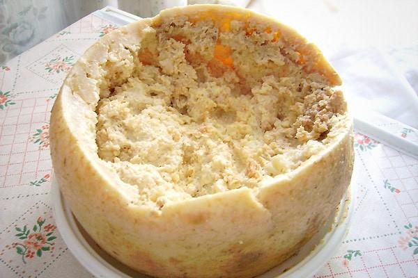 maggot-cheese-casu-marzu (1)