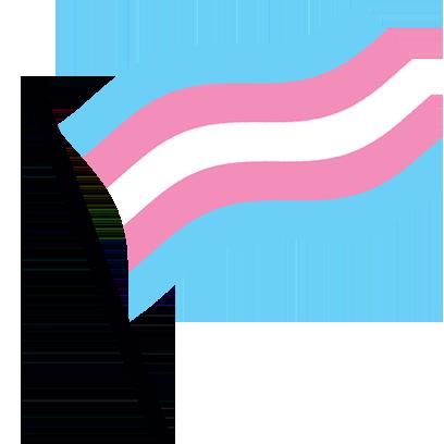 Trans Pride Flag Waving