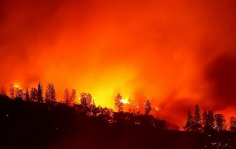 Two California Wildfires Have Devastating Impact